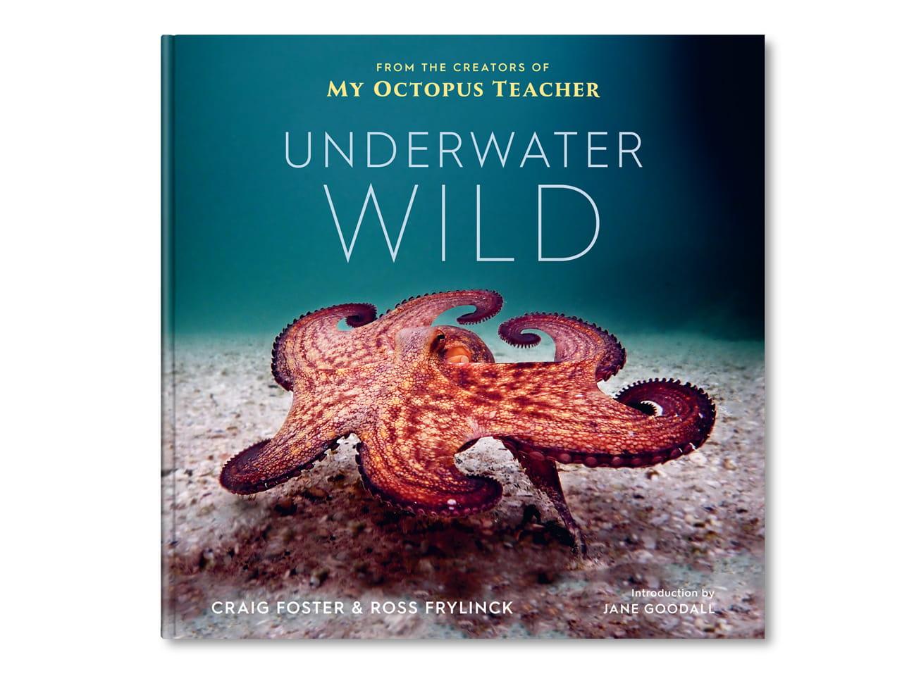 underwaterwild-book-cover-desktop